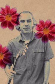 Chico Mário – A Melodia da Liberdade