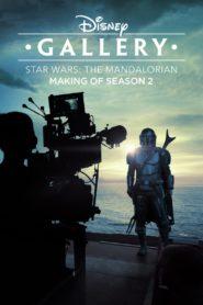 Disney Gallery / Star Wars: The Mandalorian: Season 2