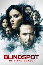 Blindspot: Season 5