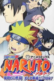 Naruto: The Lost Story – Mission: Protect the Waterfall Village!